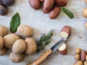 erbe aromatiche con patate di diverse varietà, una tagliata a m
